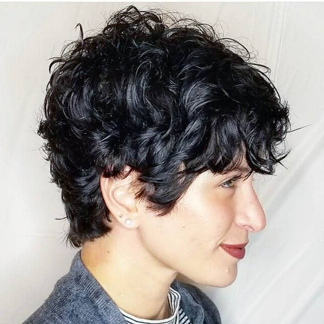Most Up To Date Curly Pixie Hairstyles With Segmented Undercut In Short Pixie Cuts For Curly Hair – 25+ (View 8 of 20)