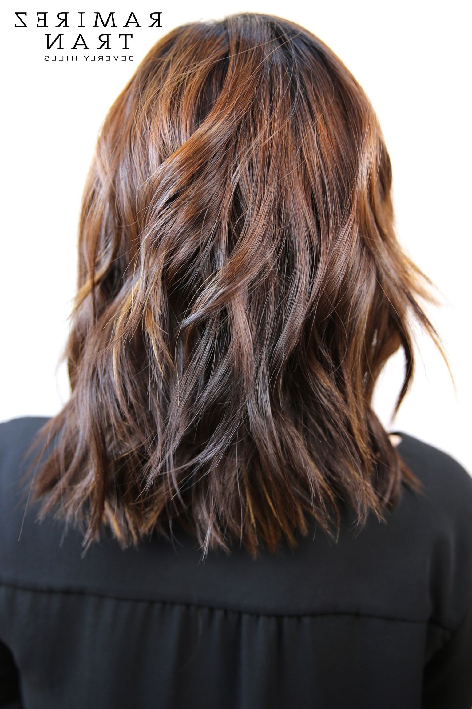 Subtle Highlights   Brown Hair With Highlights, Hair With Chestnut Short Hairstyles With Subtle Highlights (View 17 of 20)