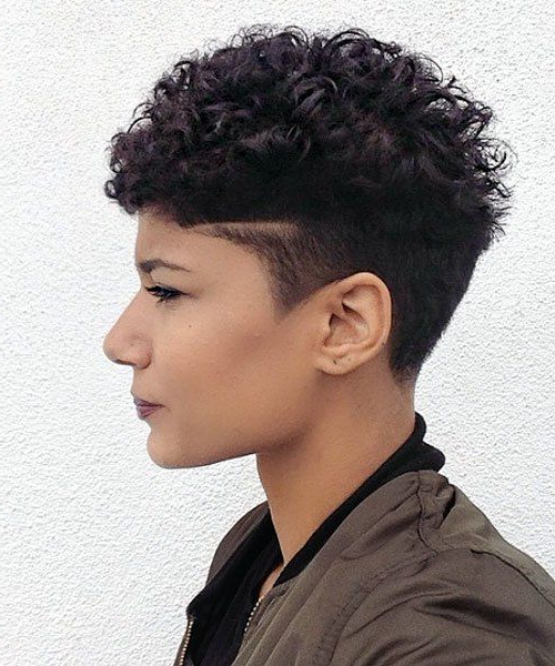 Well Known Pixie Undercuts For Curly Hair Inside Pin On Short Hair Styles (View 18 of 20)