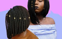 Mini Braids Bob Hairstyles