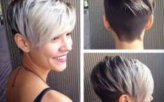 Silver And Brown Pixie Haircuts