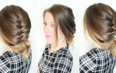 Quick Braided Updo Hairstyles