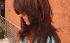 Long Chestnut Brown Shag Hairstyles