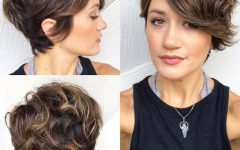 Curly Pixie Haircuts with Highlights