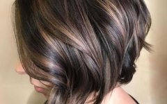 Inverted Brunette Bob Hairstyles with Feathered Highlights