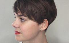 Long Feathered Espresso Brown Pixie Hairstyles