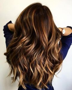 Long Hairstyles Brown with Highlights