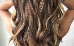 Highlights for Long Hairstyles
