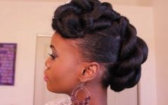 Afro American Updo Hairstyles