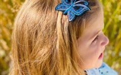 Butterfly Clips Hairstyles
