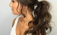 Black Ponytail Hairstyles with a Bouffant