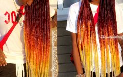 Colorful Cornrows Under Braid Hairstyles