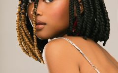 Bumped and Bobbed Braided Hairstyles