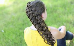 Diagonal French Braid Hairstyles
