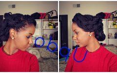 Senegalese Twist Styles Updo Hairstyles