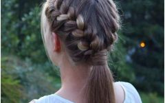 Double French Braid Crown Ponytail Hairstyles