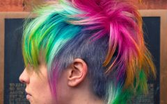 Rainbow Bright Mohawk Hairstyles