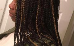 Black Twists Micro Braids with Golden Highlights