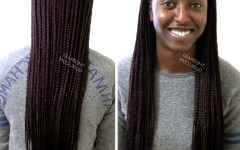 Two Extra Long Braids