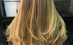 Soft Feathery Texture Hairstyles for Long Hair