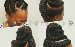 Regal Braided Up-do Ponytail Hairstyles