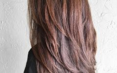 Reddish Brown Hairstyles with Long V-cut Layers