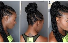 Perfect Black Braided Ponytail