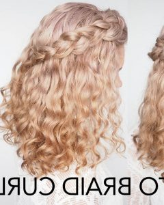 Curly Braid Hairstyles
