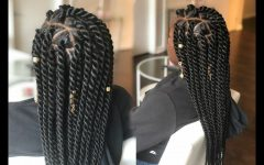 Rope Twist Hairstyles with Straight Hair
