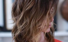 Subtle Ombre Shag Haircuts