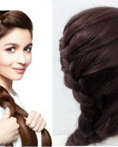 Braided Hairstyles on Saree