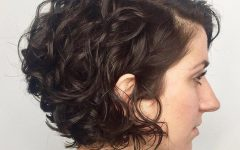 Curly Bob Hairstyles