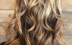 Curly Bronde Haircuts with Choppy Ends