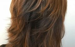 Medium Copper Brown Shag Haircuts for Thick Hair