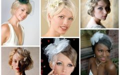 Wedding Hairstyles For Short Hair With Birdcage Veil