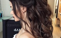 Formal Half Ponytail Hairstyles