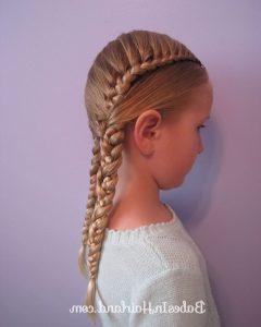 Pocahontas Braids Hairstyles