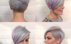 Lavender Pixie-bob Hairstyles