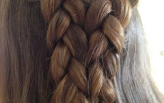 Double Rose Braids Hairstyles