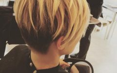 Long Honey Blonde and Black Pixie Hairstyles