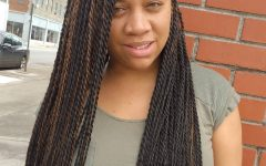 Side-parted Micro Twist Hairstyles