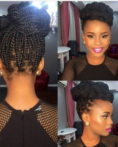Single Braid Updo Hairstyles