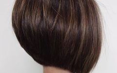 Sleek Rounded Inverted Bob Hairstyles