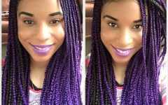 Purple Highlights in Black Braids