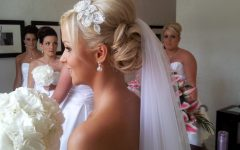 Wedding Updo Hairstyles with Veil