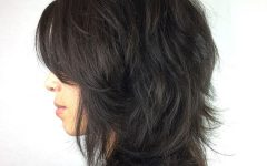 Feathered Black Shag Haircuts with Side Bangs